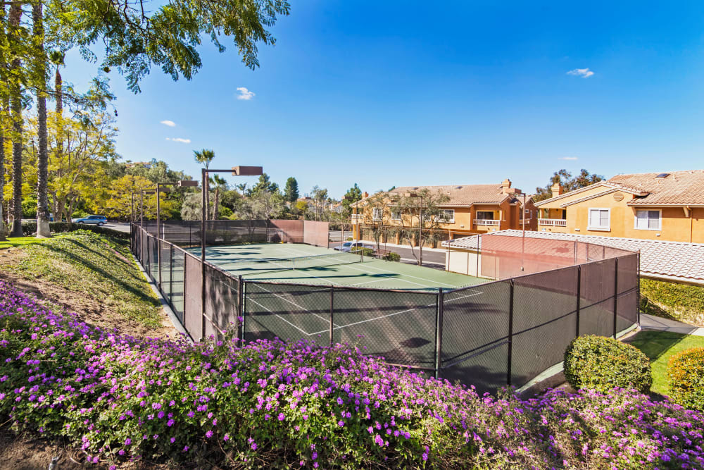 Onsite tennis courts at Sofi Canyon Hills in San Diego, California