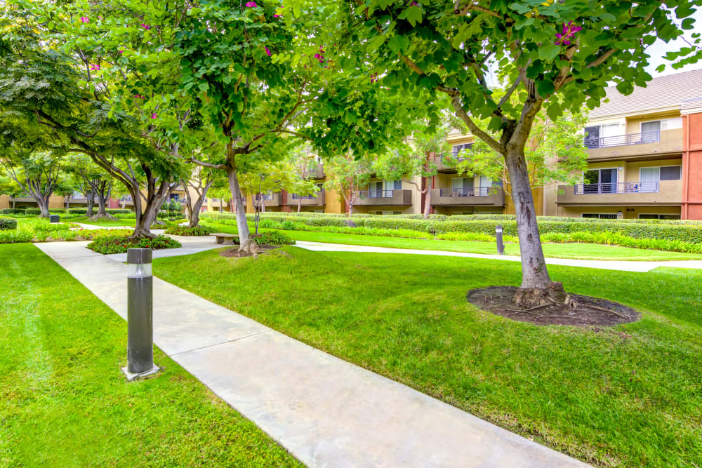 Professionally maintained green spaces with mature trees at Sofi Irvine in Irvine, California