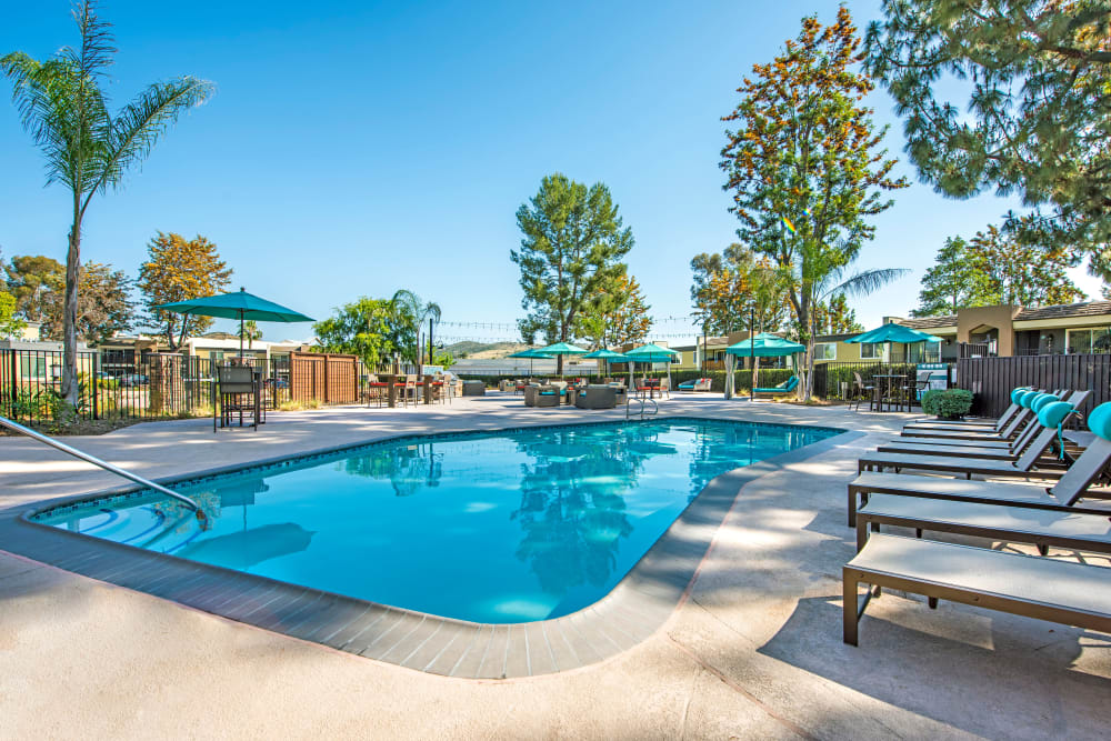 Sparkling swimming pool with chaise lounge chairs at Sofi Poway in Poway, California