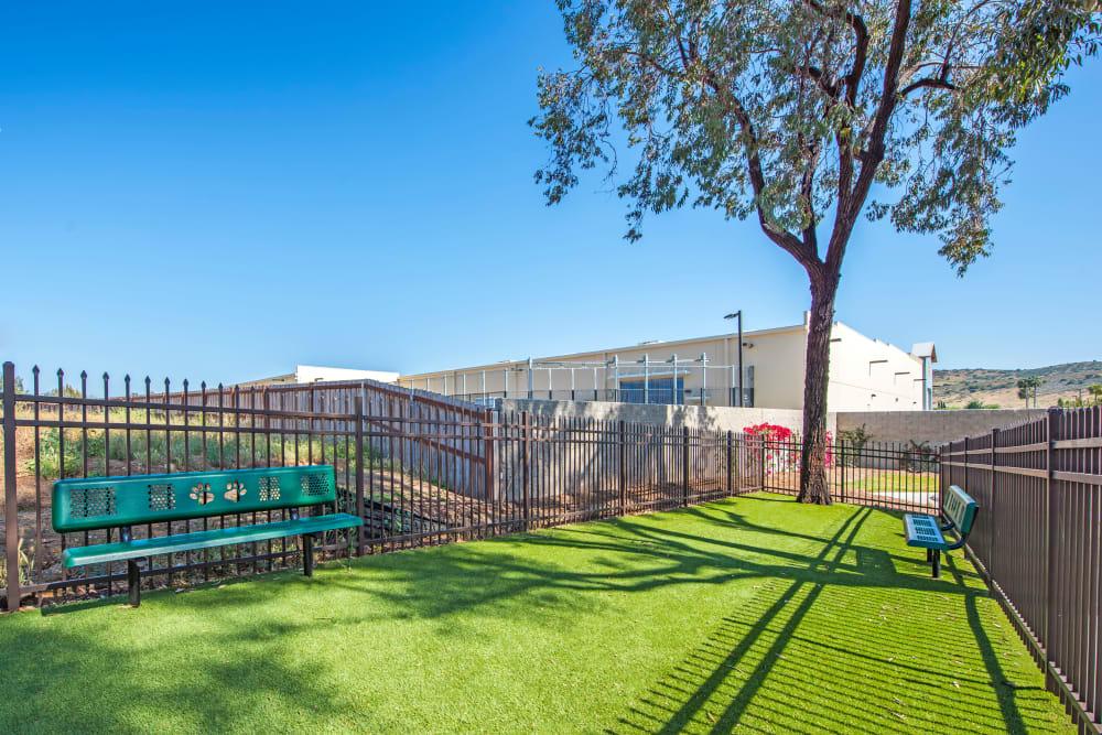 Onsite dog park at Sofi Poway in Poway, California