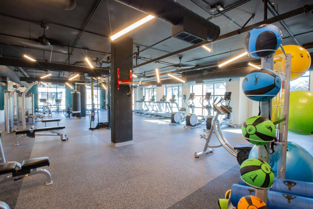 Our Apartments in Charleston, South Carolina offer a Fitness Center