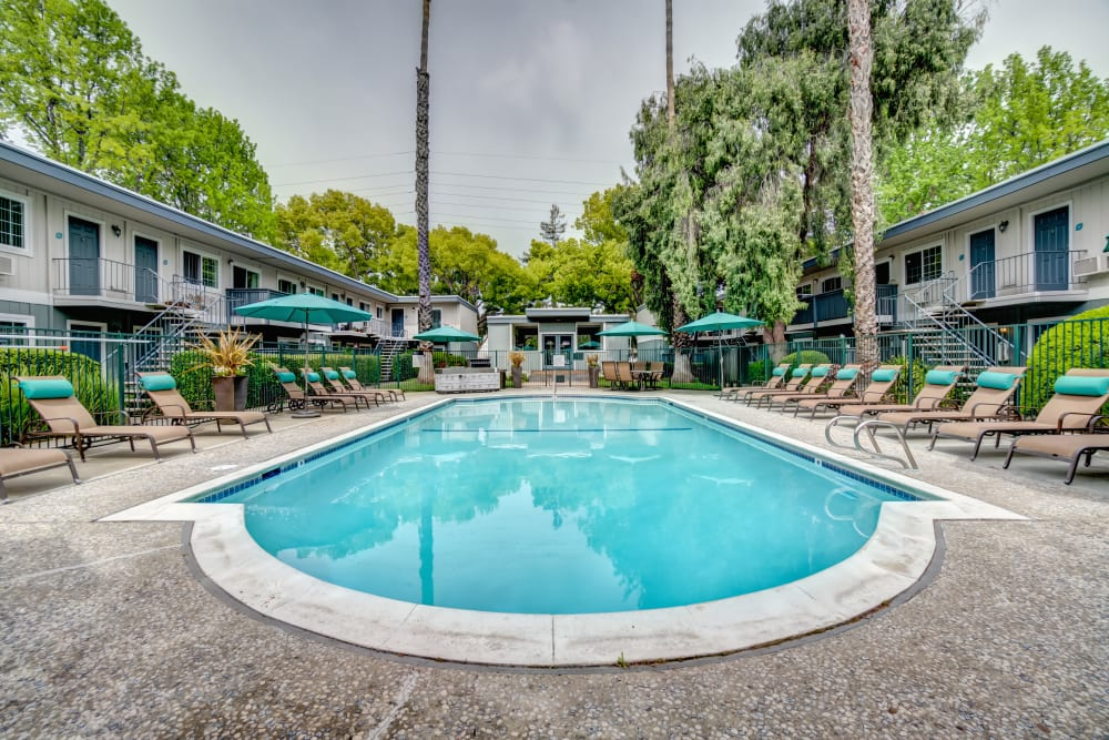View of mature trees around the community from the swimming pool at Sofi at Los Gatos Creek in San Jose, California