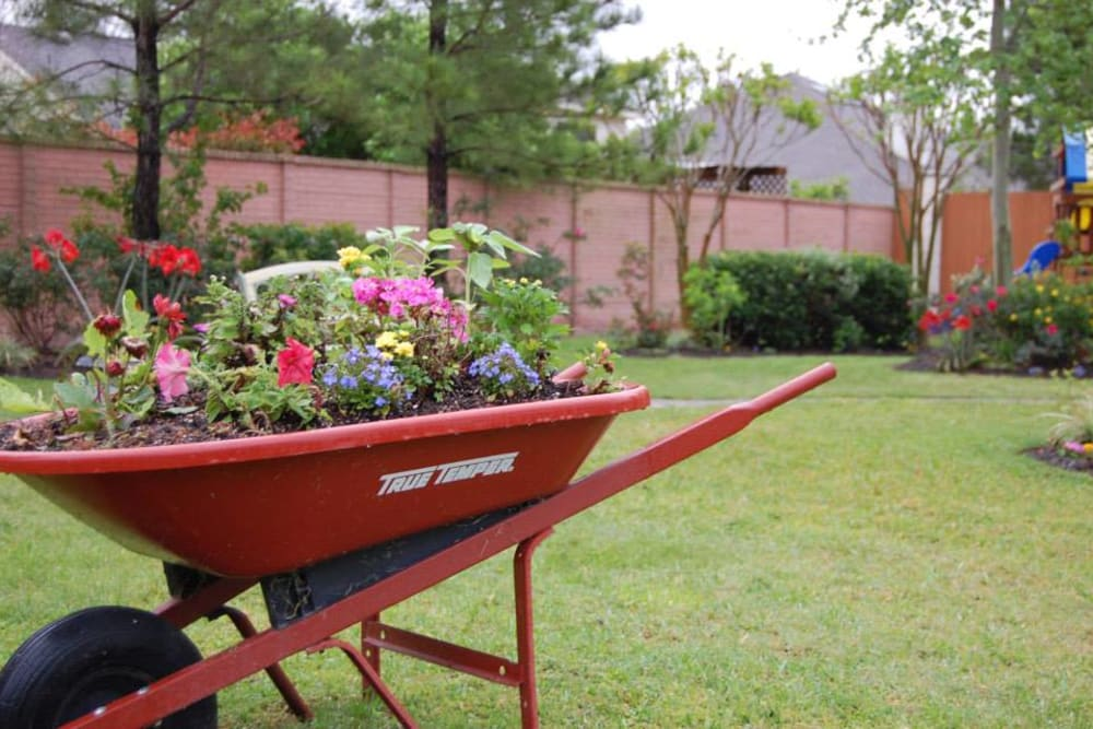 Flowers in a wheelbarrow at Autumn Grove Cottage at Katy in Katy, Texas