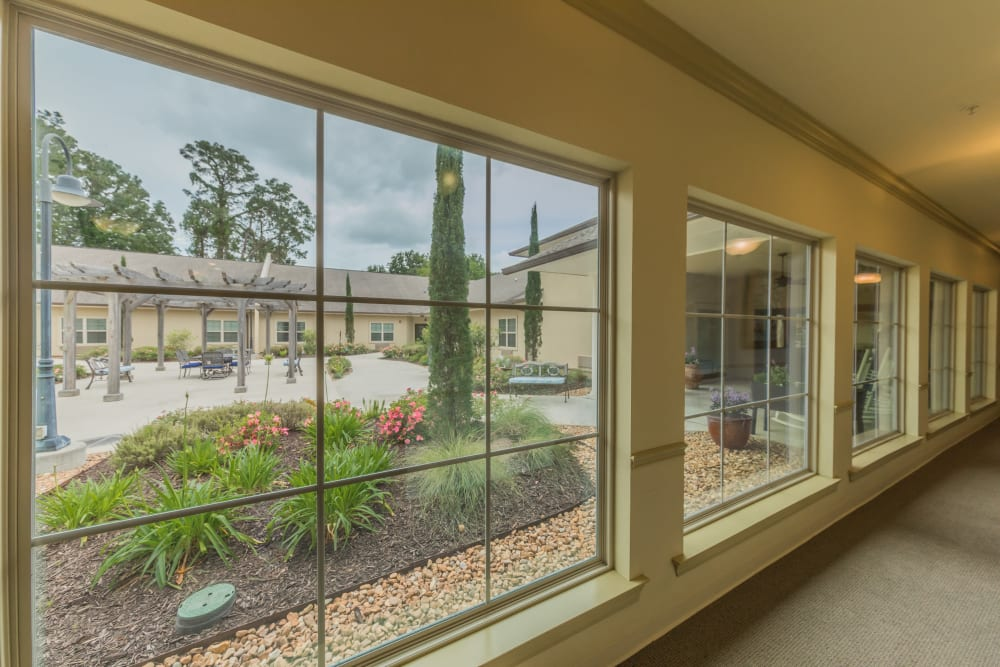 Large windows at Cedar Crest Memory Care in Lafayette, Louisiana