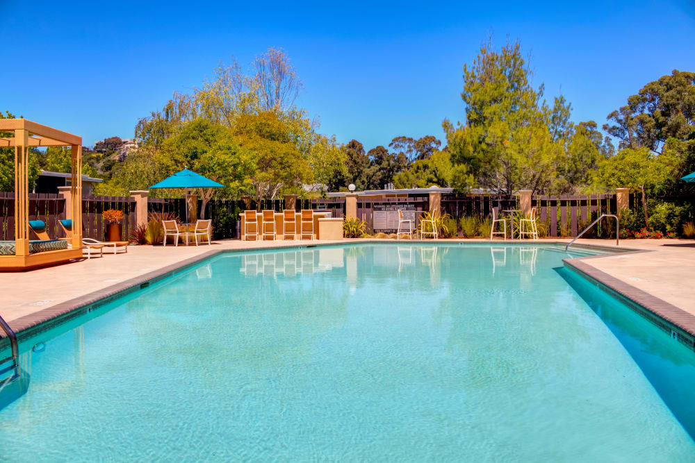 Sparkling swimming pool on a beautiful day at Sofi Belmont Hills in Belmont, California