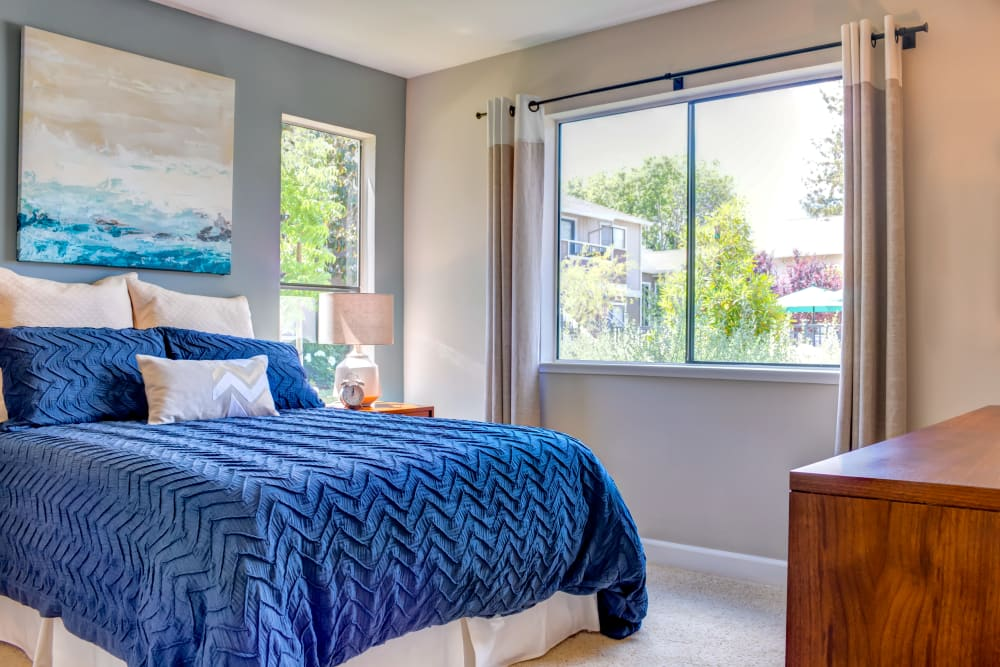 Master bedroom with an accent wall and draped bay windows in a model home at Sofi Berryessa in San Jose, California