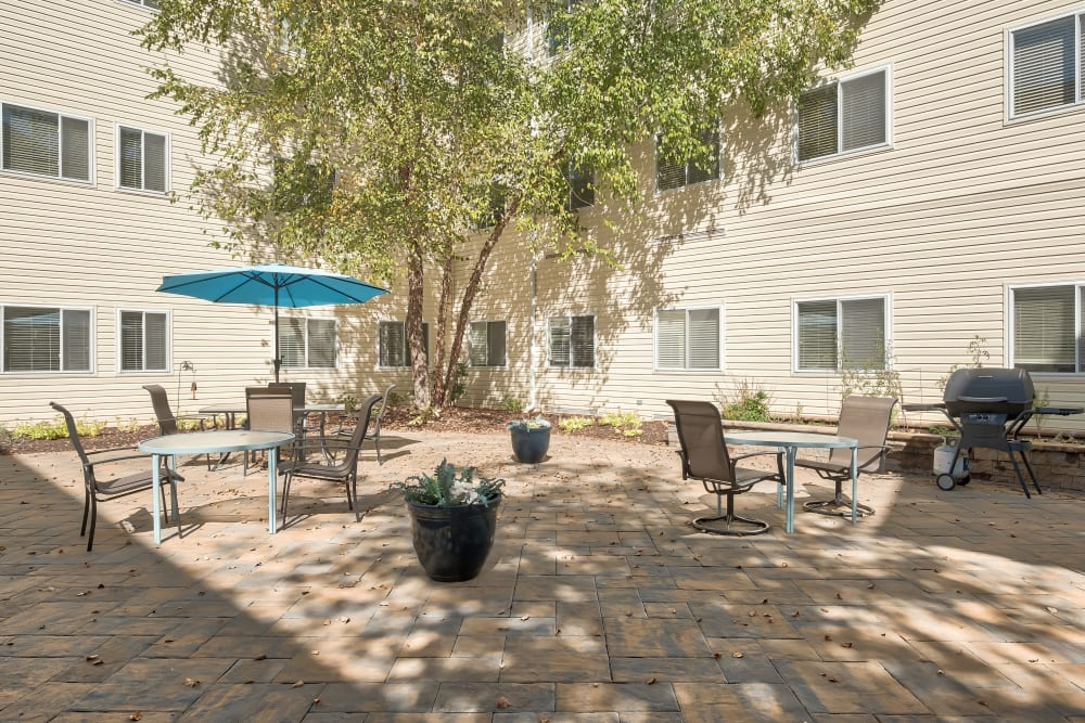 A sunny patio at Hillhaven in Adelphi, Maryland