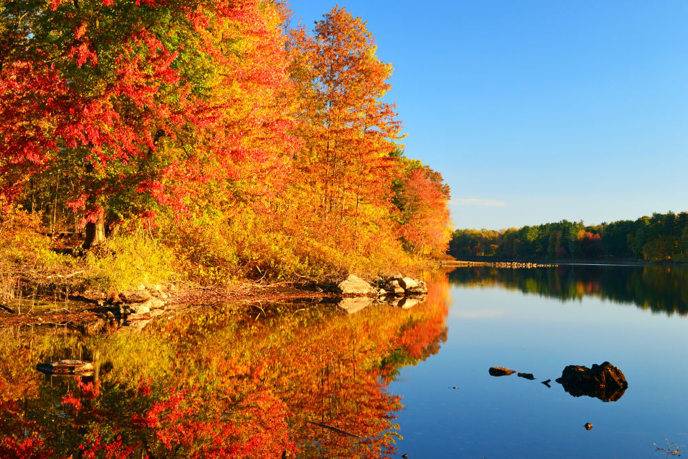 Gorgeous view of a river in Ellington, Connecticut near Autumn Chase