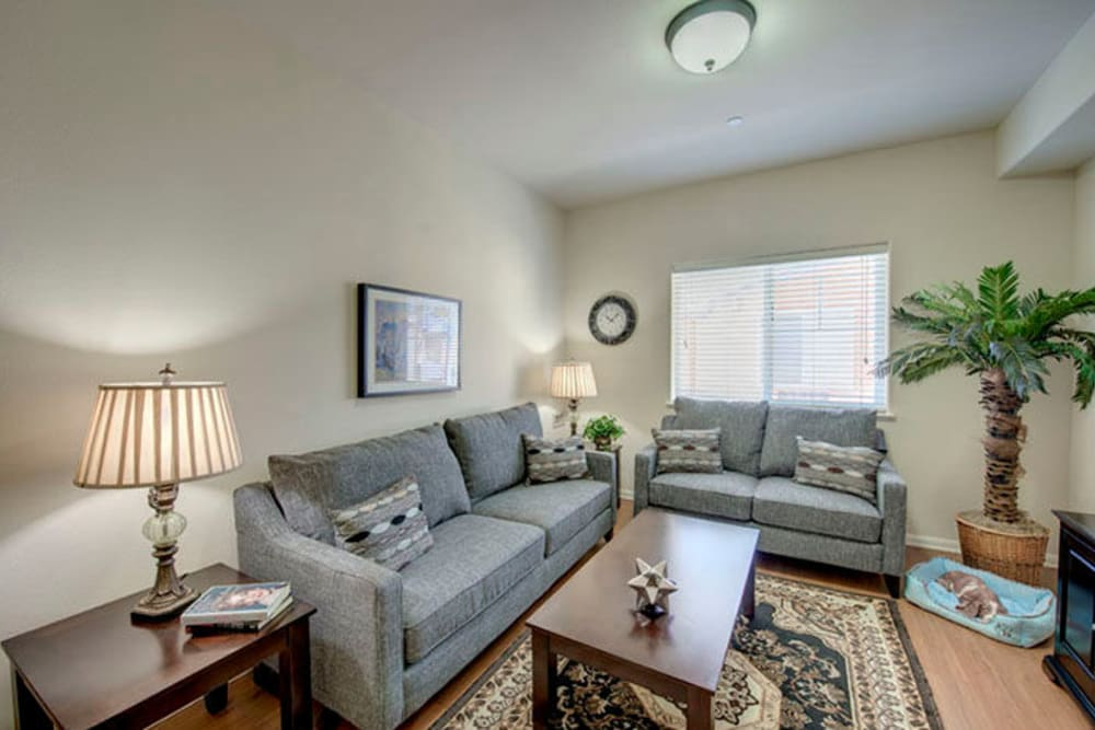 Fully furnished senior apartment living room at Cypress Place in Ventura, California