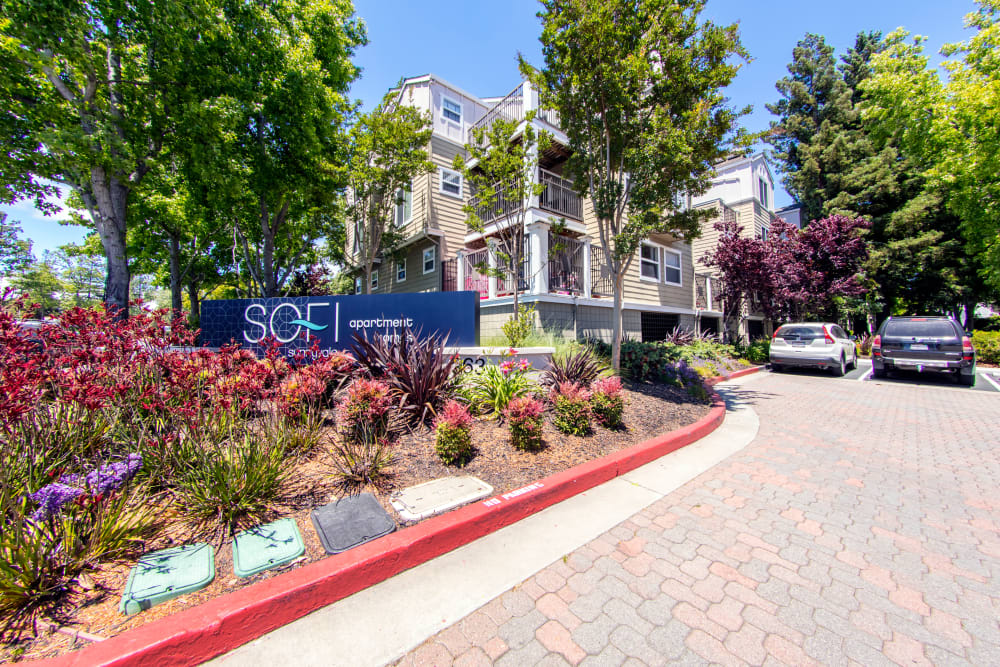 Our sign surrounded by well-maintained landscaping at the entrance to Sofi Sunnyvale in Sunnyvale, California