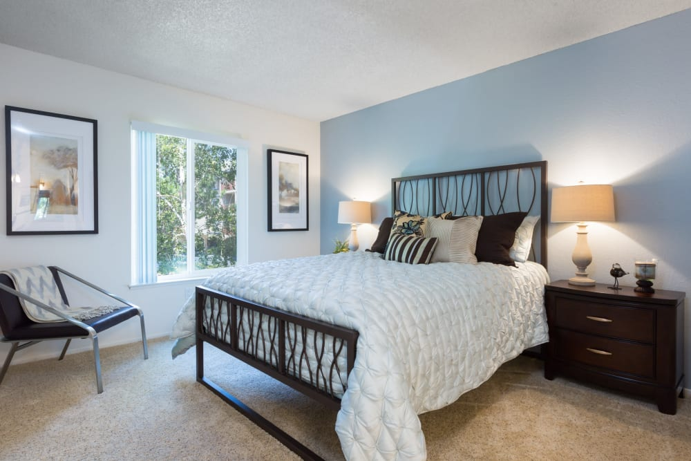 Child's bedroom with an accent wall in a model home at Waterstone Fremont in Fremont, California