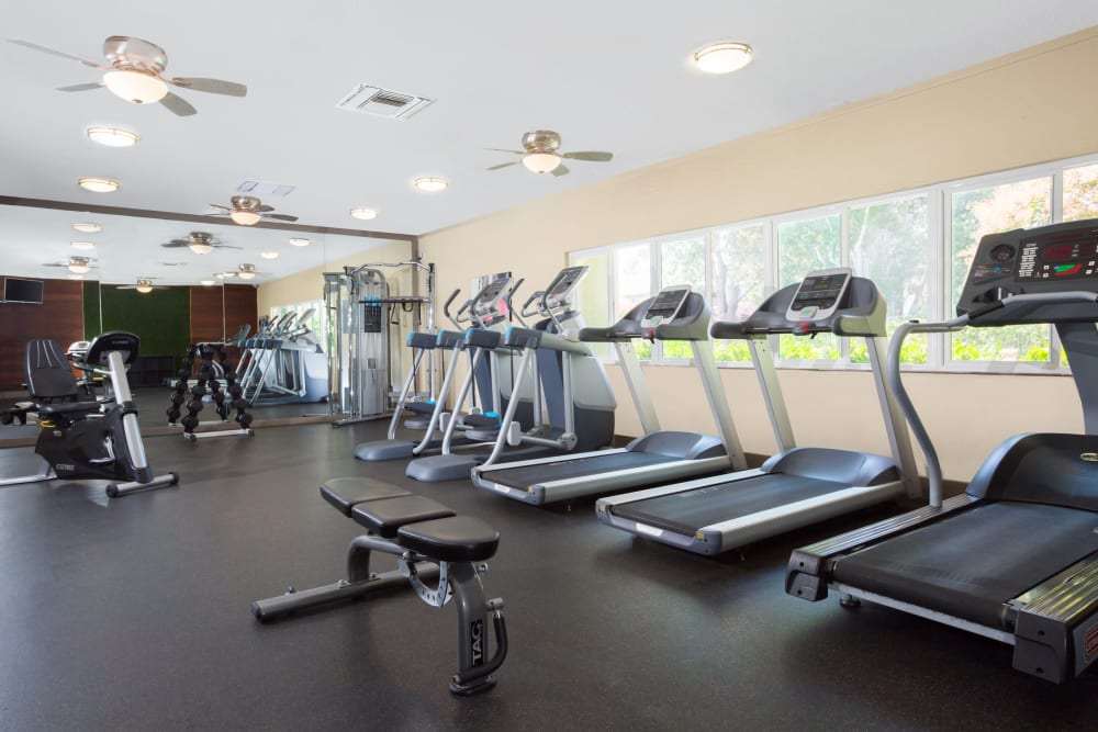 Onsite fitness center with plenty of exercise equipment at Waterstone Fremont in Fremont, California