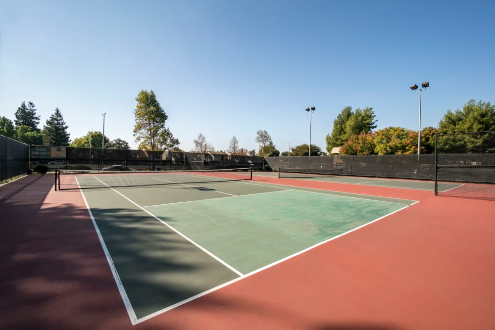 Well-maintained onsite tennis courts at Waterstone Fremont in Fremont, California