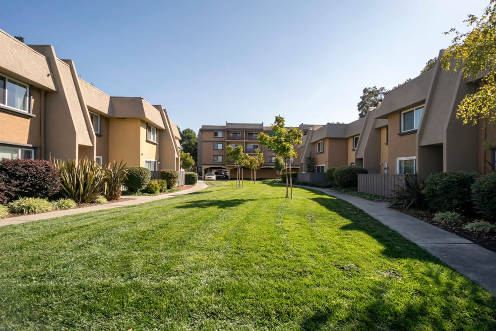 Well-maintained green spaces between resident buildings at Waterstone Fremont in Fremont, California