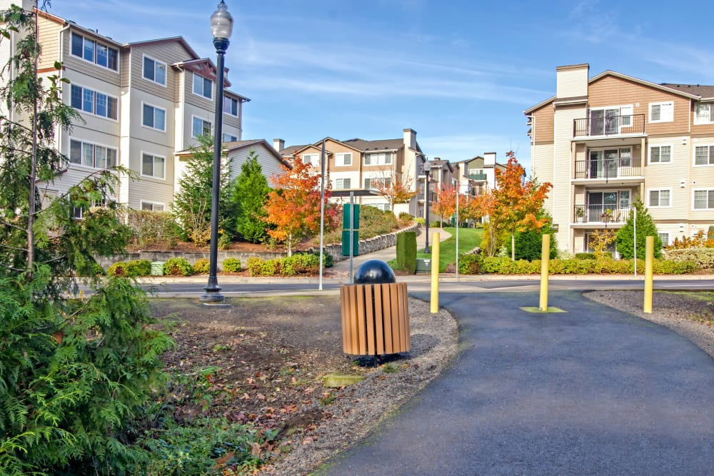 One of many pathways winding through our community at Sofi at Cedar Mill in Portland, Oregon