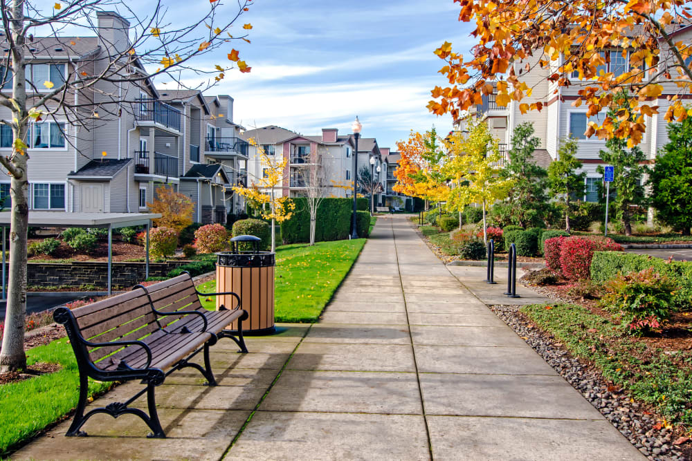 Park benches and mature trees throughout the community at Sofi at Cedar Mill in Portland, Oregon