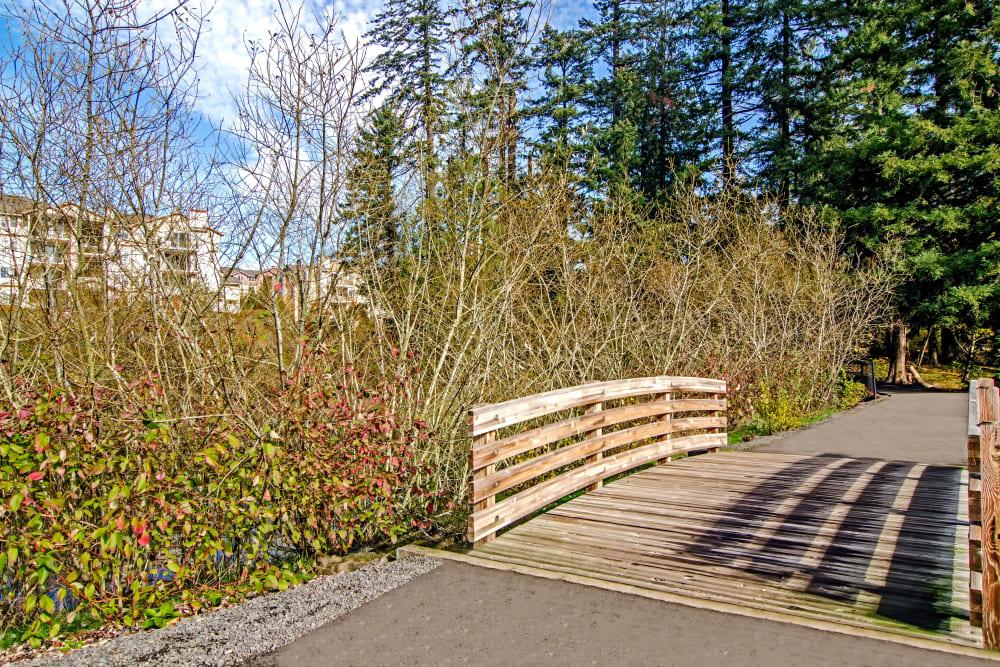 Wooden bridge across a creek at Sofi at Cedar Mill in Portland, Oregon
