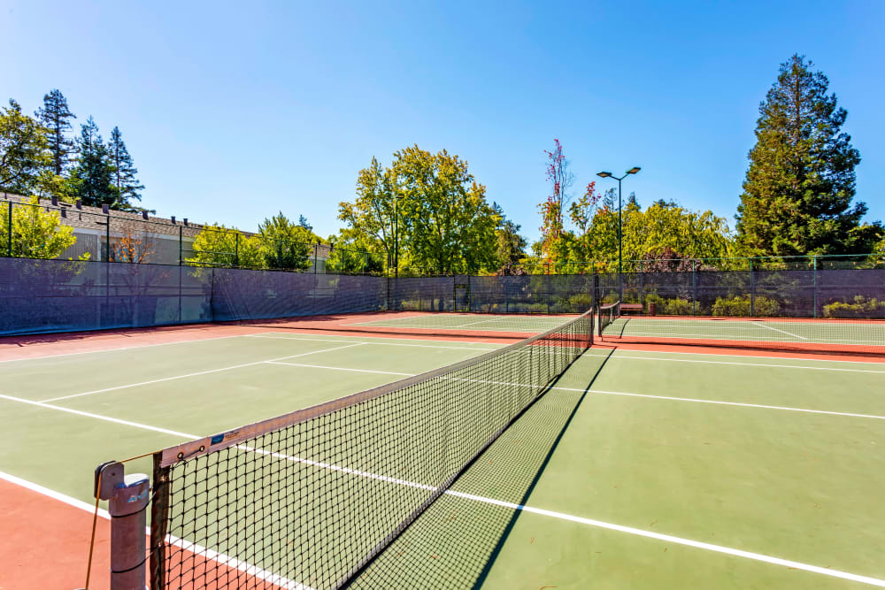 Tennis courts on a sunny day at Glenbrook Apartments in Cupertino, California