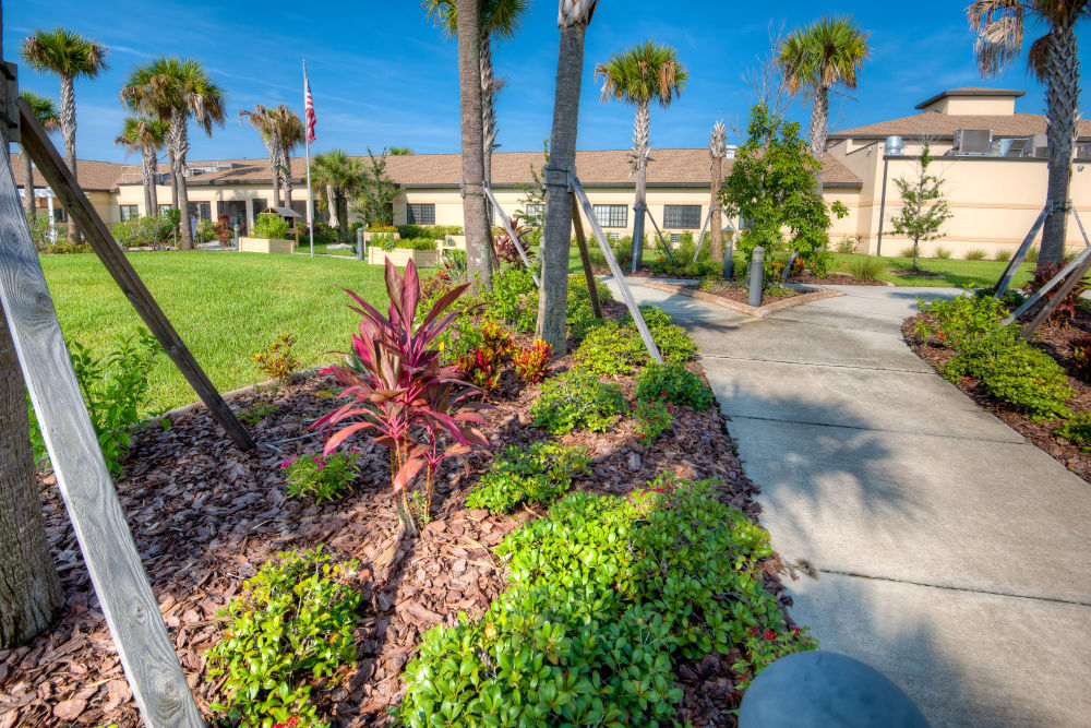 Lush greenery at Inspired Living Hidden Lakes in Bradenton, Florida.