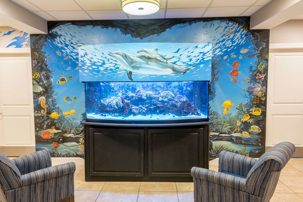 Large fish tank at Inspired Living Tampa in Tampa, Florida