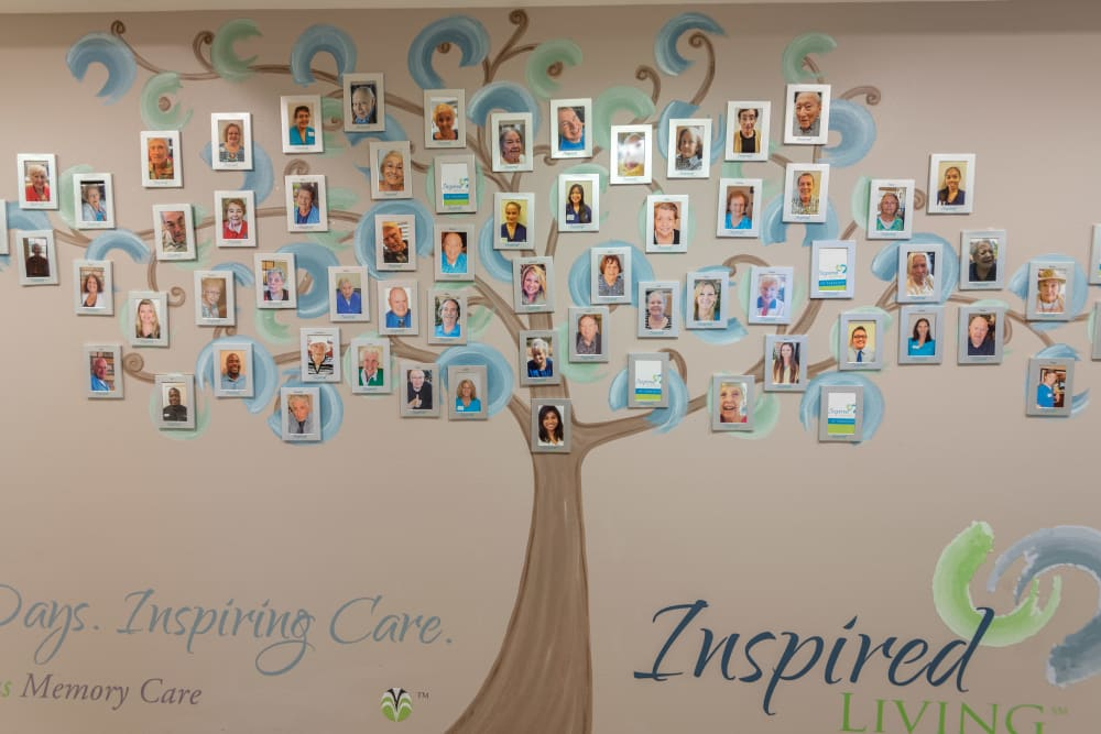 Photo tree filled with photos of staff and residents at Inspired Living Ivy Ridge in St Petersburg, Florida.