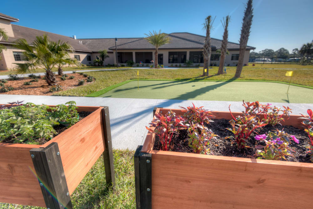 Plant boxes and the putting green at Inspired Living in Tampa, Florida.