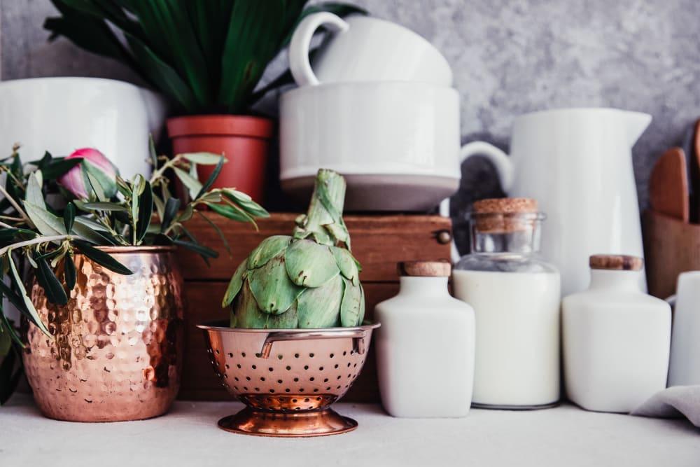 Plants on a kitchen counter at Artisan Living Bella Citta in Davenport, Florida
