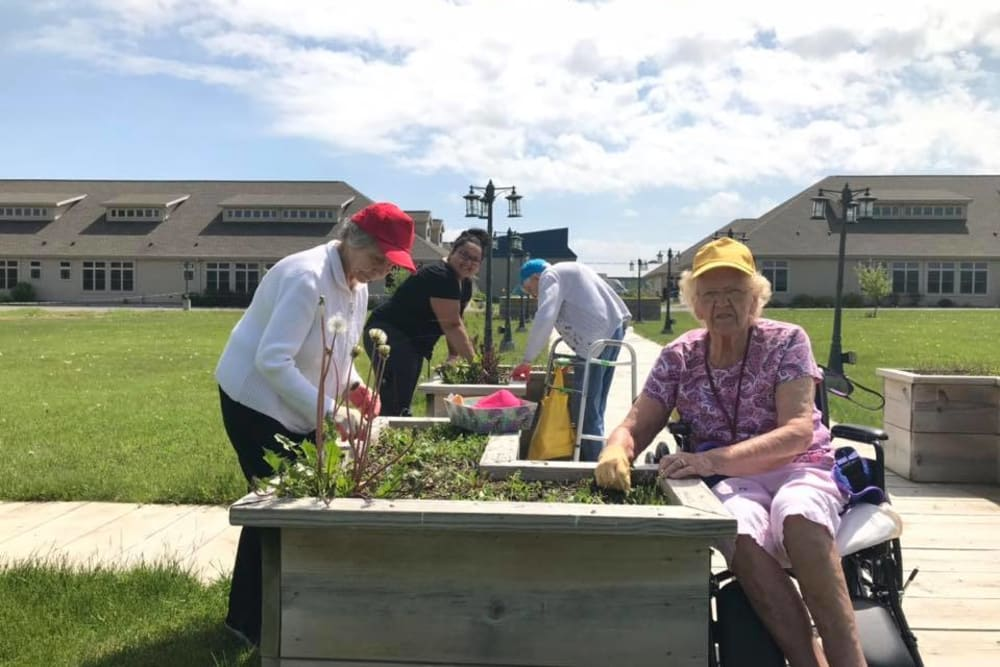 Residents and staff gardening outside in the sunshine at The Landings of Kaukauna in Kaukauna, Wisconsin