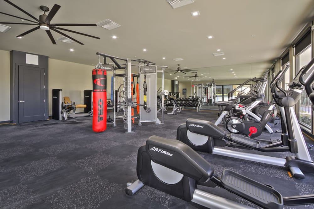 Our Apartments in Henderson, Nevada offer a Gym