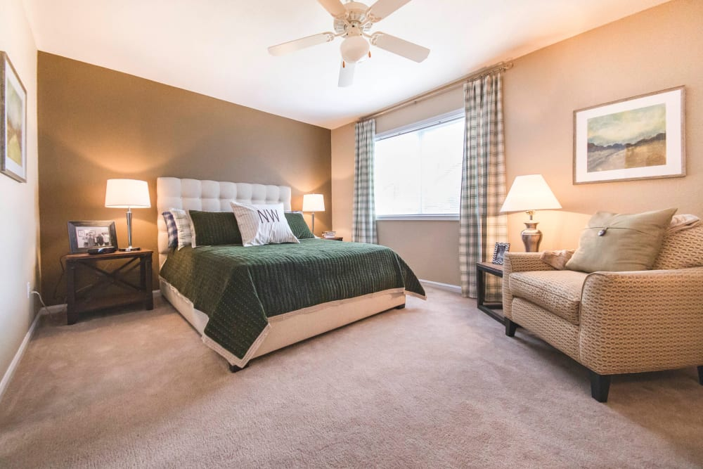 Large master bedroom with a ceiling fan and an accent wall in a model home at North Woods in Charlottesville, Virginia
