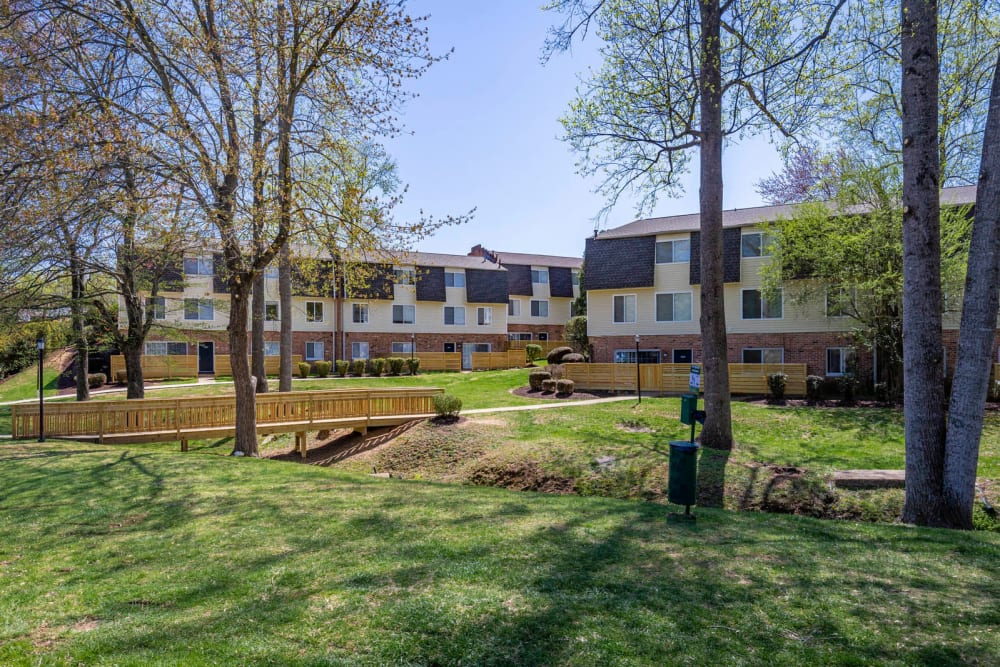 Mature trees and expansive lawns at North Woods in Charlottesville, Virginia