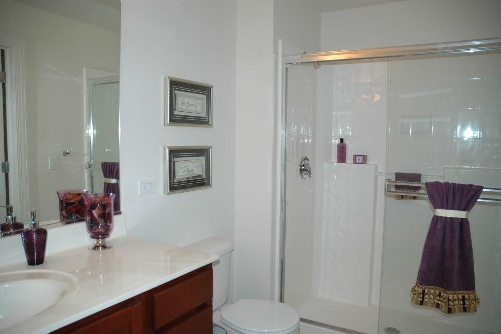 Clean bathroom at 301 Riverwalk Place in Buffalo Grove, Illinois