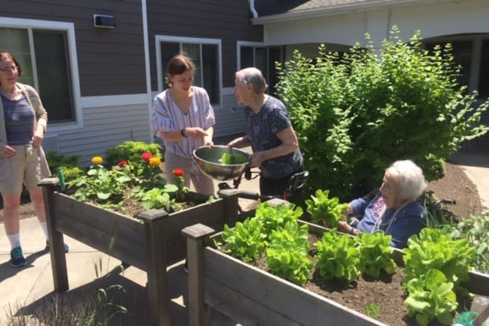 Residents gardening at The Reserve at East Longmeadow in East Longmeadow, Massachusetts
