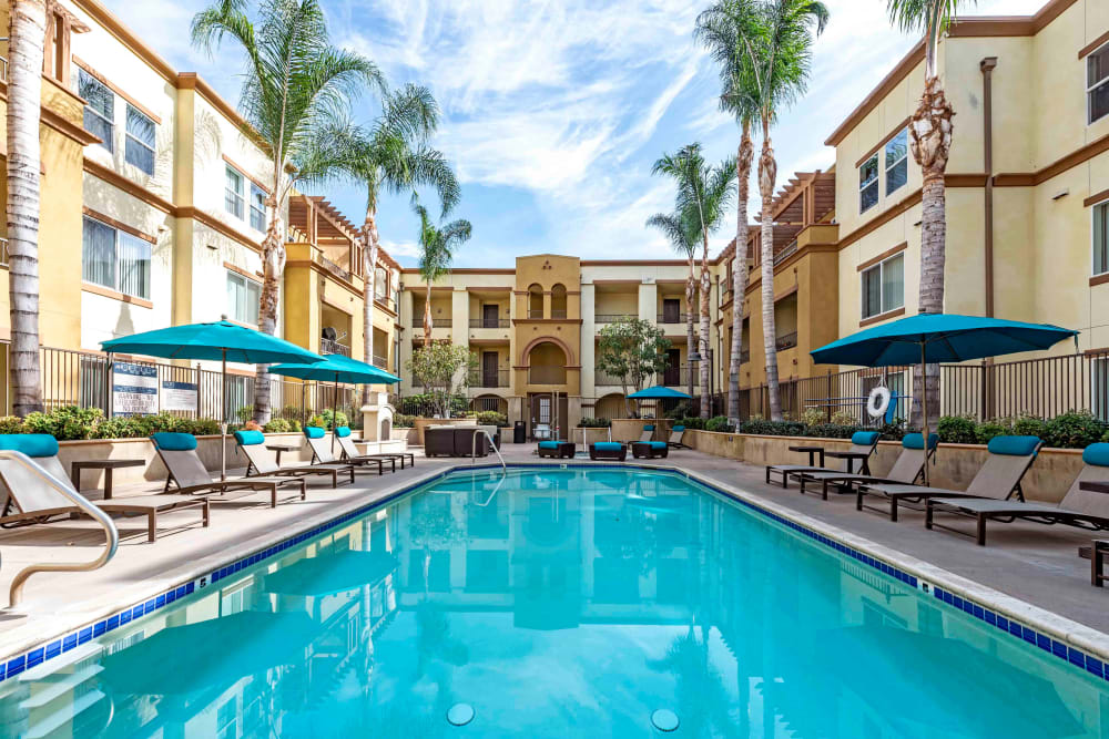 Chatsworth, CA Apartments for Rent - Sofi at Topanga Canyon Apartments Swimming Pool With Poolside Lounge Chairs and Umbrellas