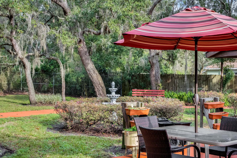 Courtyard with walkway and furniture at Forest Oaks of Spring Hill