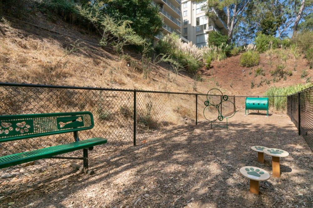 Onsite bark park at Sofi Belmont Glen in Belmont, California