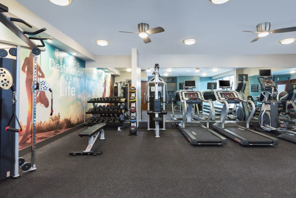Treadmills and other cardio machines in the fitness center at Sofi Belmont Glen in Belmont, California
