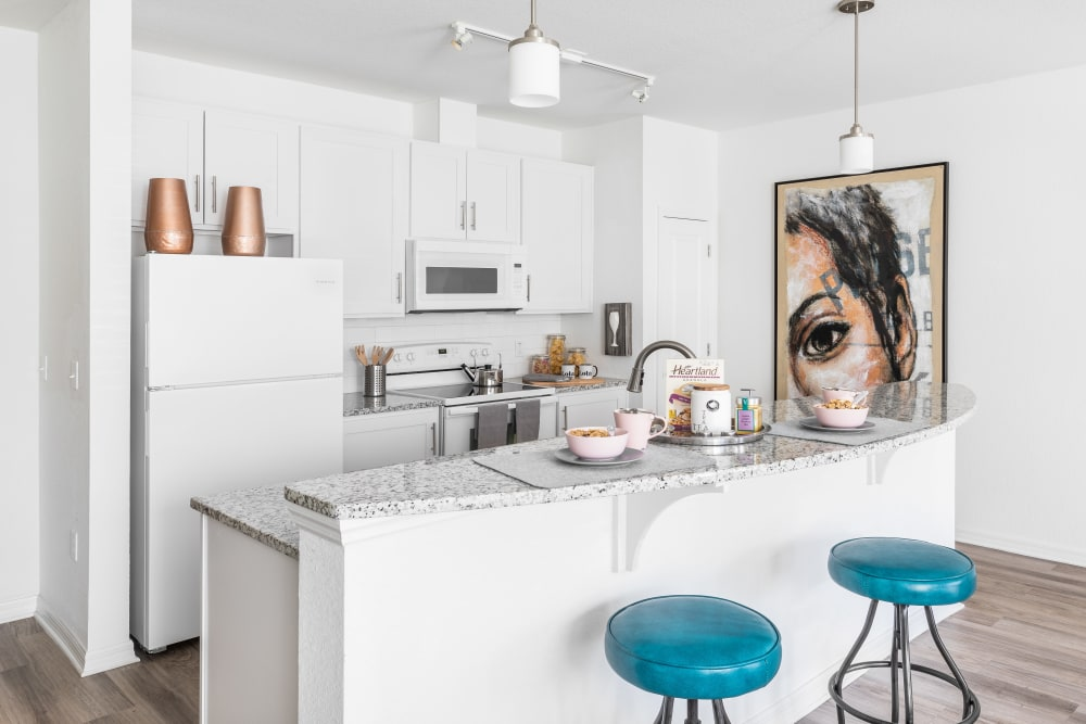 Luxury Kitchen at Lola Apartments in Riverview, Florida