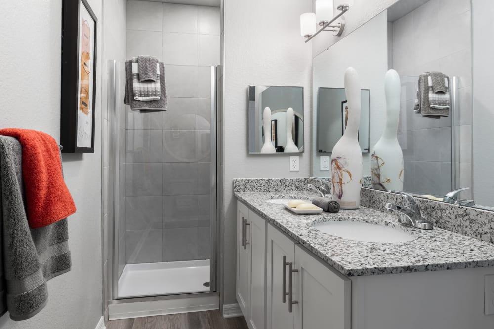 Our Unique Apartments in Riverview, Florida showcase a Bathroom