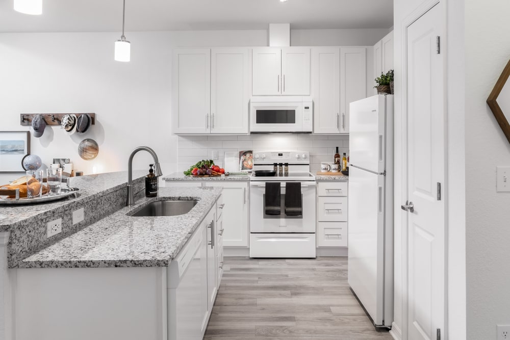 Modern Kitchen at Apartments in Riverview, Florida
