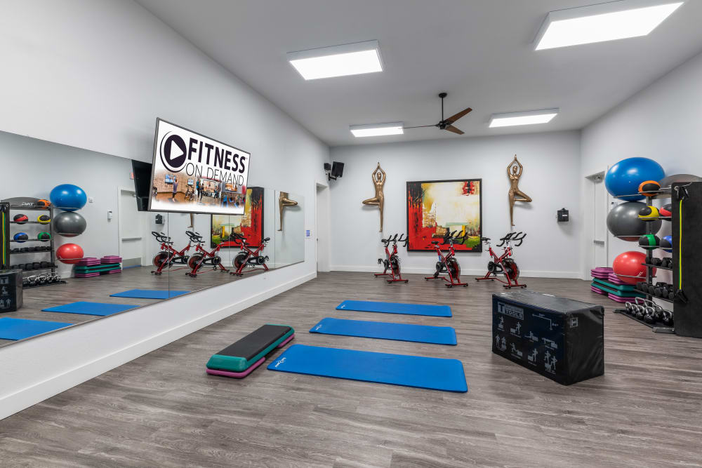 Fitness Center at Lola Apartments in Riverview, Florida