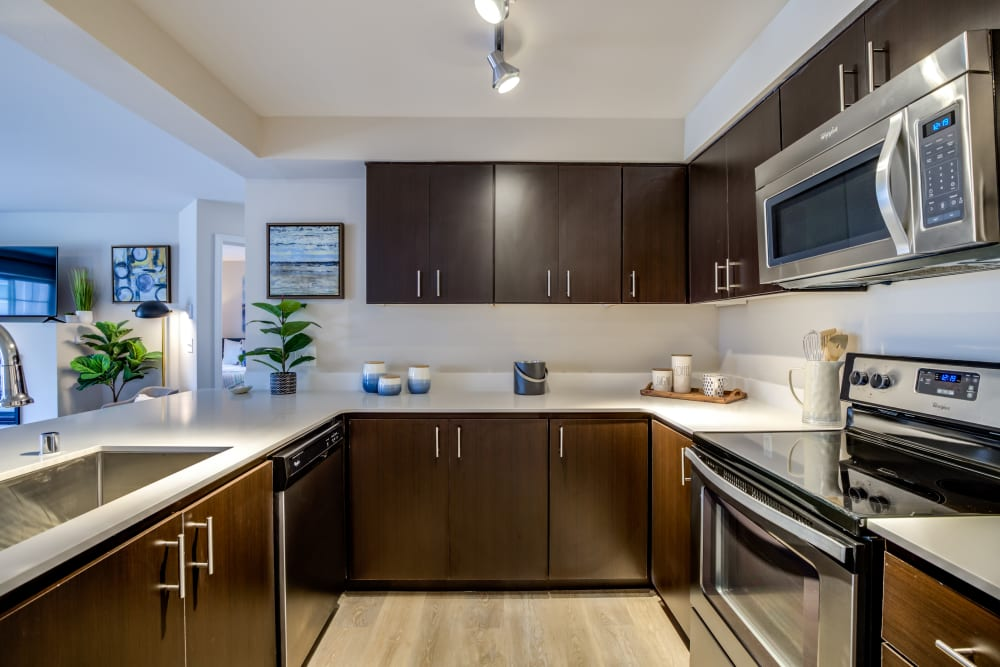 Modern kitchen with dark wood cabinets at Vue Issaquah in Issaquah, Washington