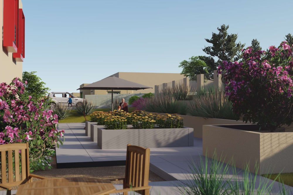 Rendering of back patio flowers at Amaran Senior Living in Albuquerque, New Mexico.