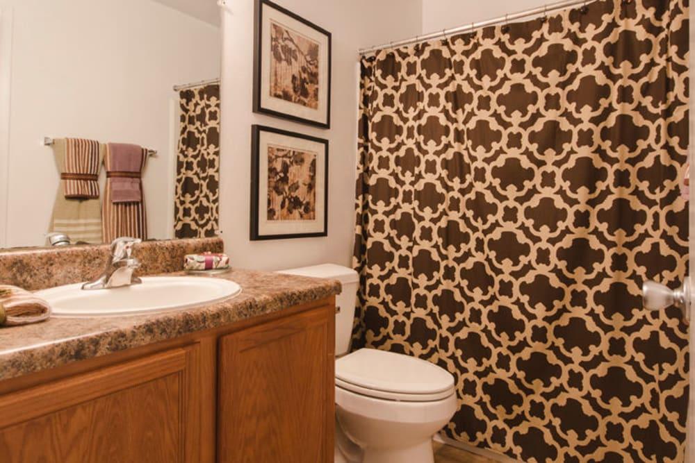 Bathroom at The Crest Apartments in Salem, Virginia