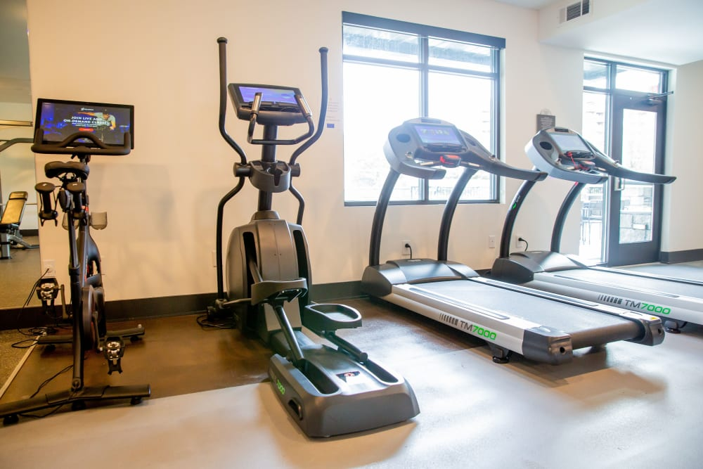 A gym with cardio equipment at Belcourt Park in Nashville, Tennessee