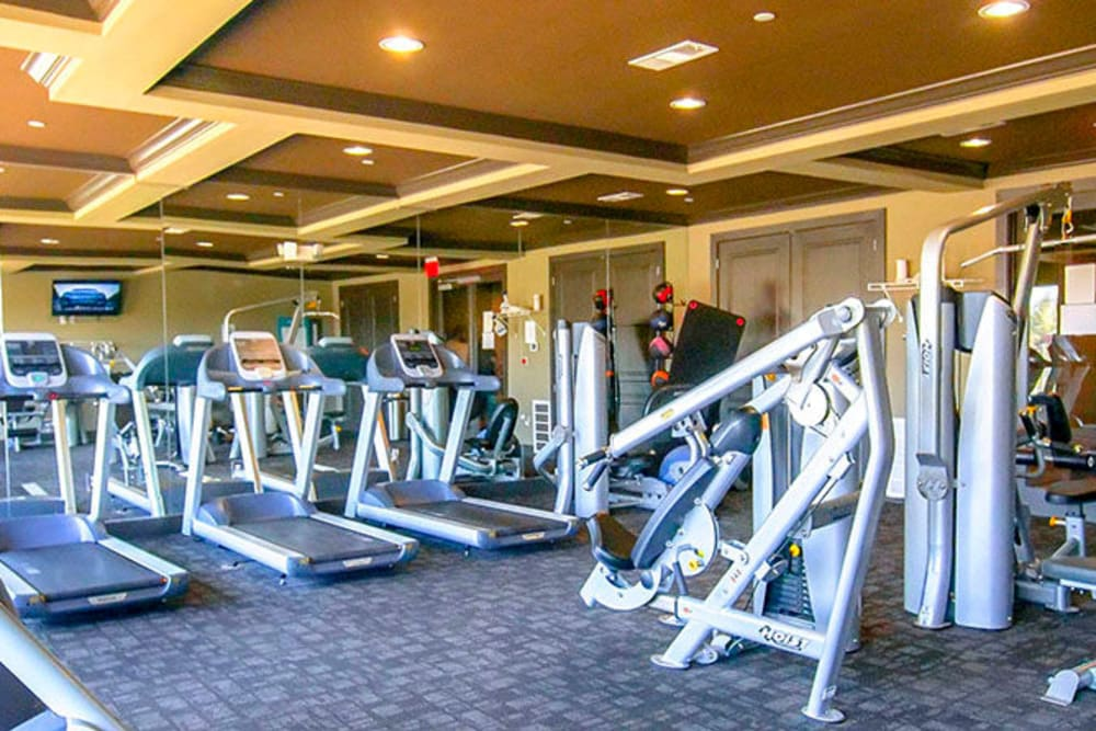 Onsite fitness center at Anatole on Briarwood in Midland, Texas