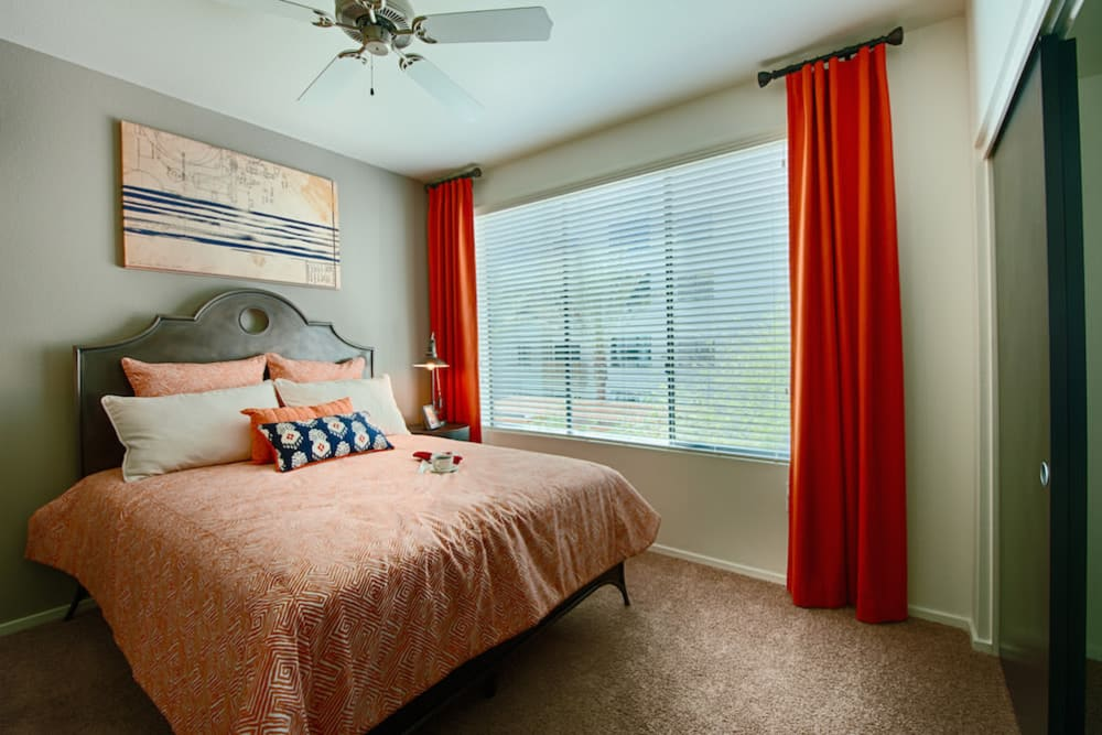 Plush carpeting and a ceiling fan in a model home's bedroom at Cactus Forty-2 in Phoenix, Arizona