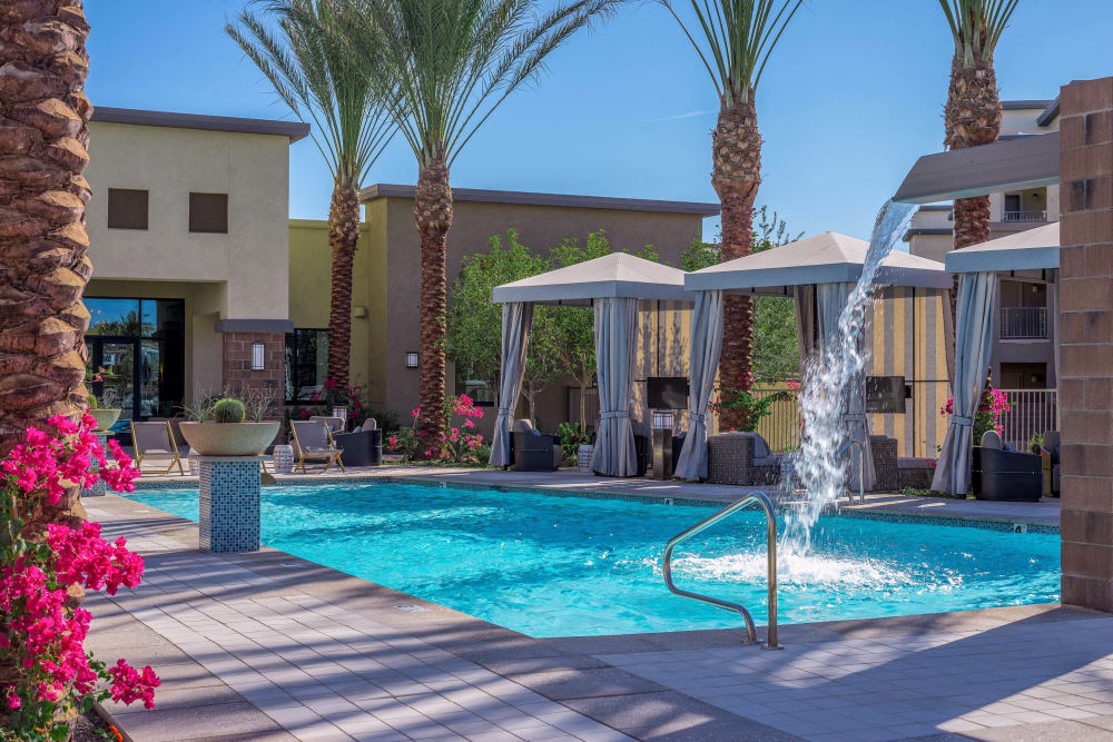 Resort-style swimming pool surrounded by palm trees at Cadia Crossing in Gilbert, Arizona