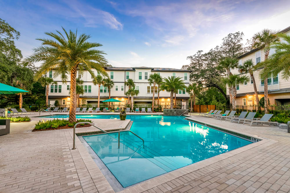 Resort-style swimming pool on a beautiful morning at Canopy at Citrus Park in Tampa, Florida
