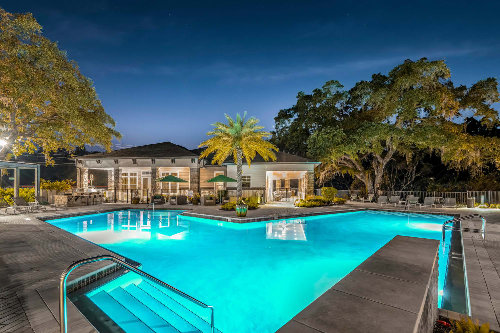 Evening view of the pool with underwater lights on at Canopy at Citrus Park in Tampa, Florida